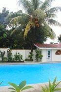 Carasuchi Villa Holiday Rental Tagaytay Philippines palm tree