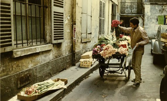 Paris Street Scene - Flower vendor preparing his cart for the daily rounds.
