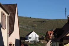 Klur Vineyards