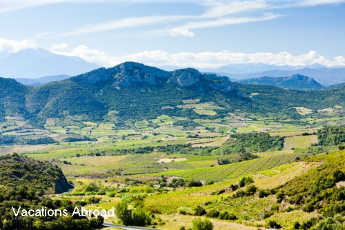 Languedoc wine vineyards and the Pyrenees mountains