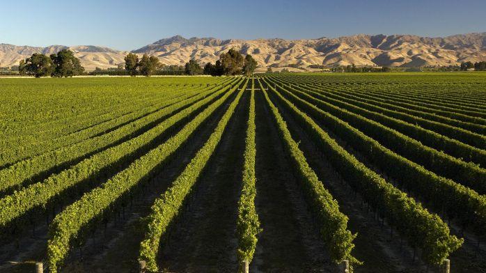 Marlboro Wine Region
