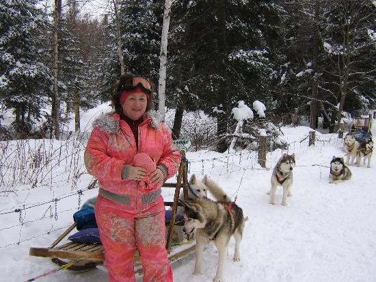 Dog sledding in Mont Tremblant