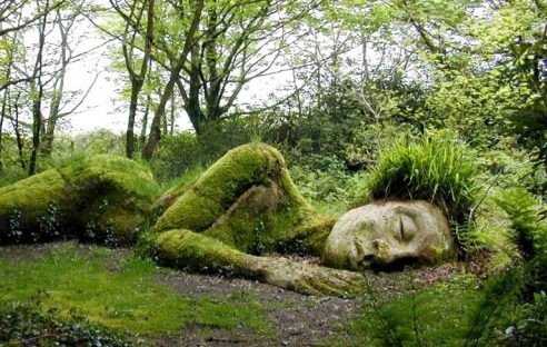 Lost-Gardens-of-Heligan-768x488