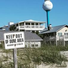 The dunes in Tybee
